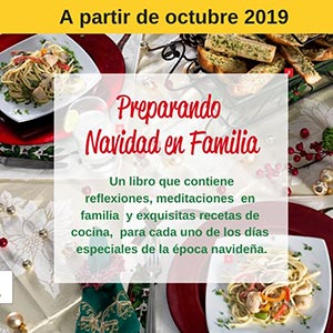 preparando navidad en familia libro donación